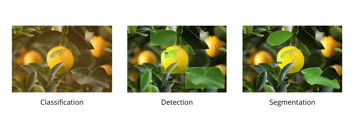different types of image annotation