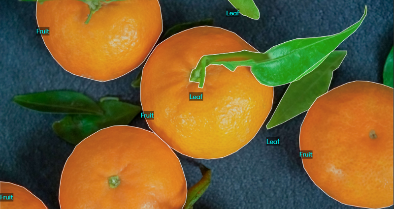 what is image annotation
